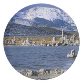 MONO LAKE TUFA STATE NATURAL RESERVE, PARTY PLATE