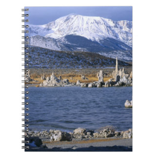 MONO LAKE TUFA STATE NATURAL RESERVE, SPIRAL NOTEBOOK