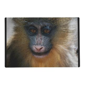 Mono lindo de Mandrill Salvamanteles