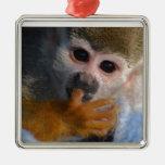 Mono lindo del bebé adornos