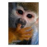 Mono lindo del bebé felicitacion