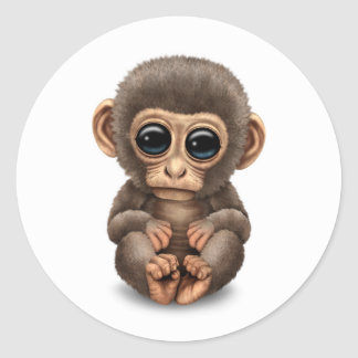 Mono lindo y curioso del bebé en blanco pegatinas redondas