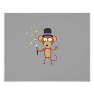 mono mágico fotografía