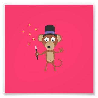 mono mágico fotografías