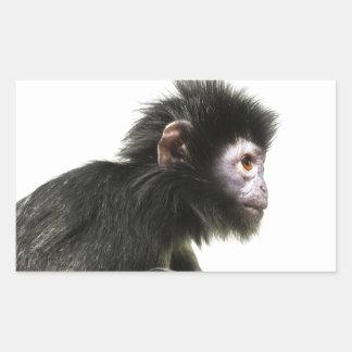 Mono melenudo del bebé pegatina rectangular