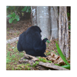 mono oscuro en imagen de la parte posterior de la  azulejo cuadrado pequeño