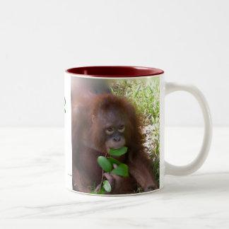 Mono para el verde taza de dos tonos