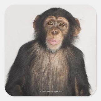 Mono Pegatina Cuadrada