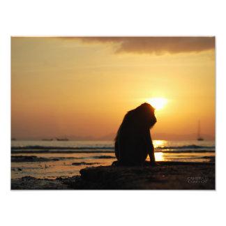 Mono pensativo //Krabi, Tailandia Impresiones Fotográficas