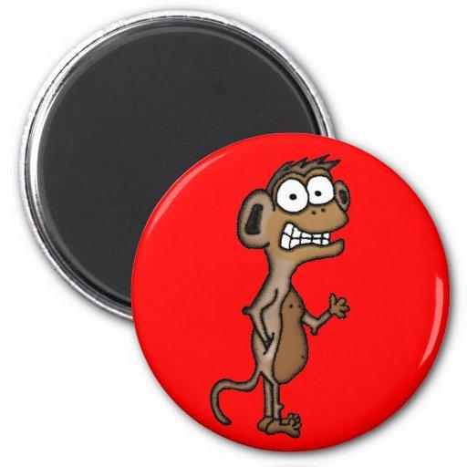 Mono que agita imán redondo 5 cm