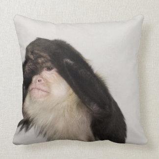 Mono que cubre sus ojos almohada