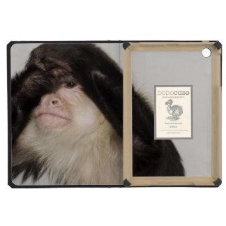 Mono que cubre sus ojos