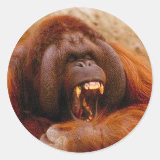 Mono que grita al pegatina