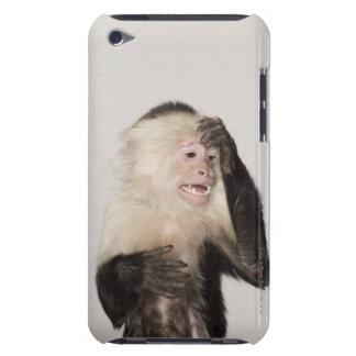 Mono que se rasguña iPod touch Case-Mate carcasas