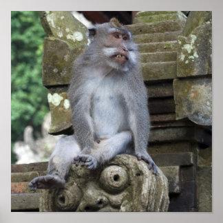Mono que se sienta en una estatua en Bali Póster