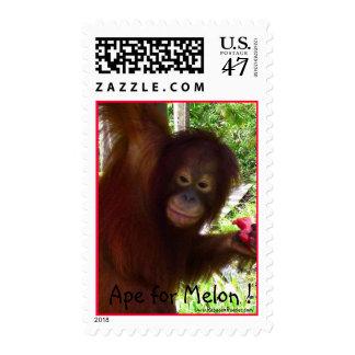 Mono que va para la sandía sello