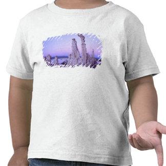 Mono reserva del lago. California. LOS E.E.U.U. Camisetas
