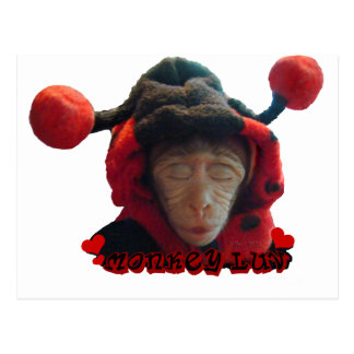 Mono soñoliento de la mariquita postales