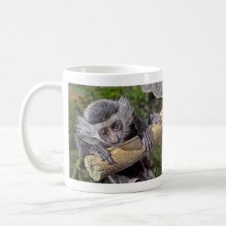 Mono - taza del bebé del mono de Colobus