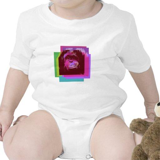 mono trajes de bebé