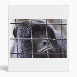 mono triste en imagen del primate de la jaula