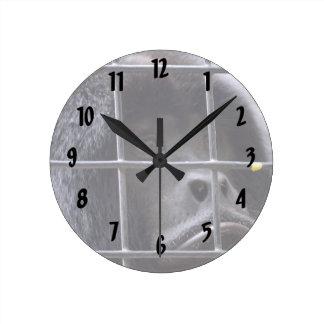 mono triste en imagen del primate de la jaula reloj redondo mediano
