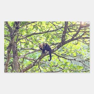 Mono y bebé de la madre en selva pegatina rectangular