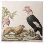 Mono y cóndor de león, nativos a Chile o a Ecuador Tejas Ceramicas