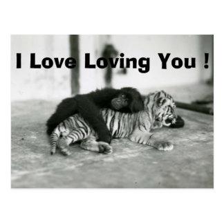 Mono y tigre divertidos del día de San Valentín Tarjeta Postal