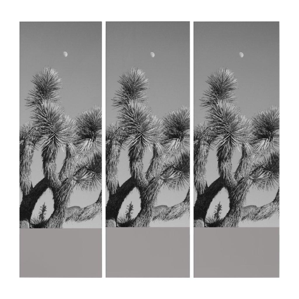 Monochromatic Joshua Tree And The Moon Triptych