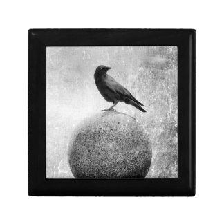 Monochrome Crow on Globe Keepsake Box