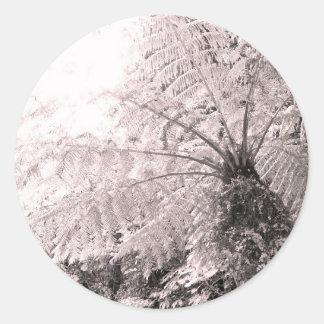 Monochrome Tree Fern Classic Round Sticker
