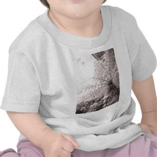 Monochrome Tree Fern T Shirt