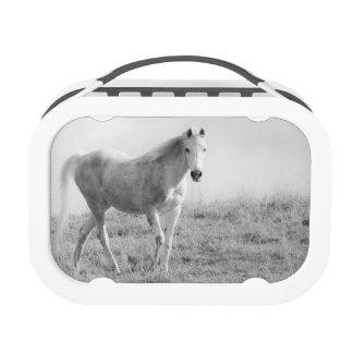 Monochrome white horse replacement plate
