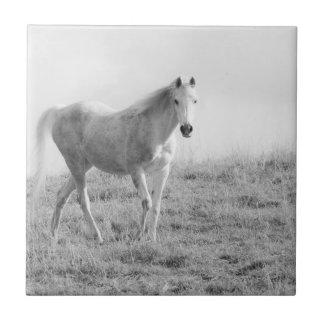 Monochrome white horse tiles
