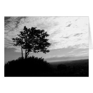 Monocromo de la silueta del árbol tarjeton