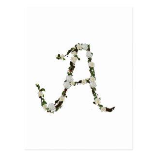 Monogram in white rose wreath postcard