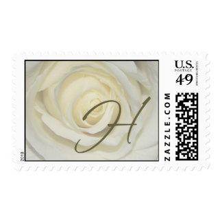 Monogram - Letter H - Soft Cream Rose Postage Stamp