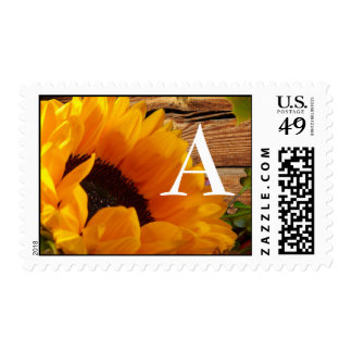 Monogram Sunflower Stamps Fall Country Floral