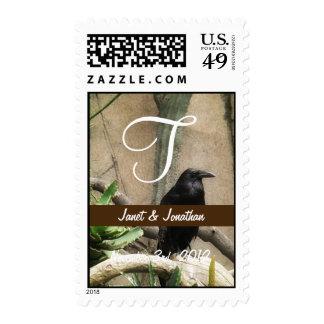 Monograma negro del cuervo envio