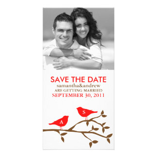 Monogrammed Love Birds Save the Date Photocards Photo Cards