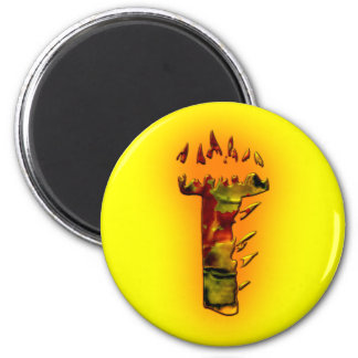 Monograms: FireWorks T 2 Inch Round Magnet