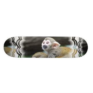 Monopatín adorable del mono de ardilla