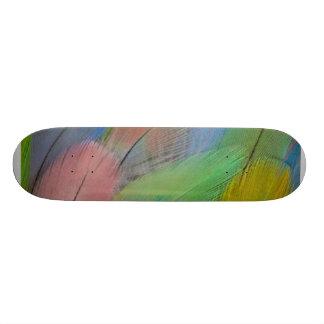 Monopatín colorido de las plumas skateboard