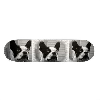 Monopatín de Boston Terrier Patinetas Personalizadas