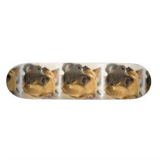 Monopatín de la cara del perro del boxeador skate board