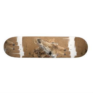 Monopatín de la mirada de la jirafa tabla de patinar