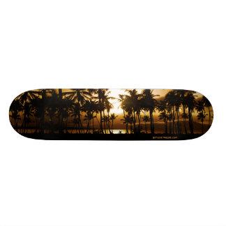 Monopatín de la puesta del sol de la palma