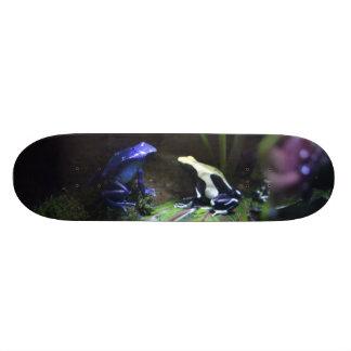 Monopatín de las ranas del dardo del veneno skateboard