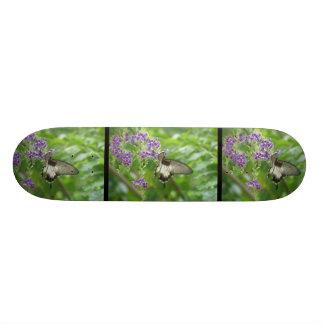Monopatín de polinización de la mariposa tablas de skate